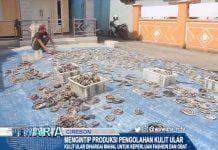 Mengintip Produksi Pengolahan Kulit Ular